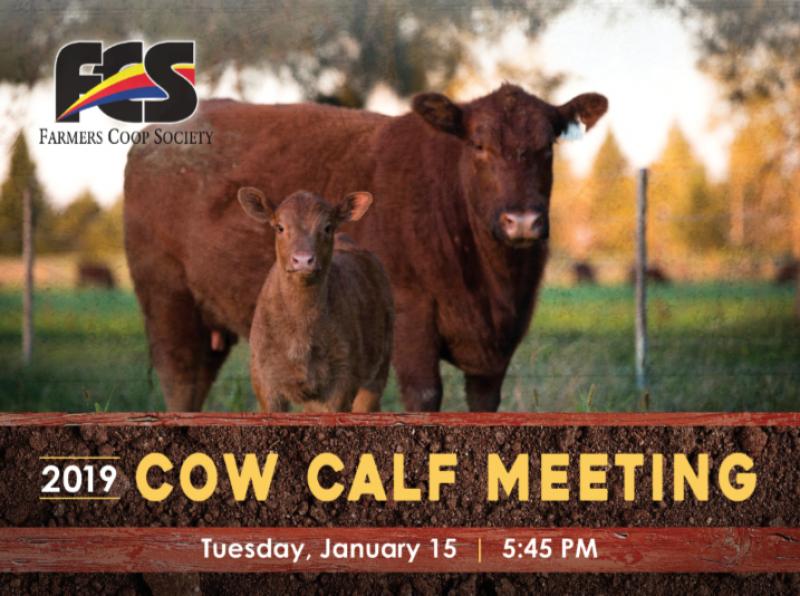 Cow Calf Website